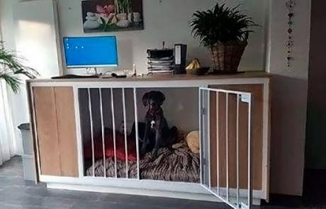 Deense dog zittend in bench / stabureau gemaakt door Boemklaar Meubelmakers
